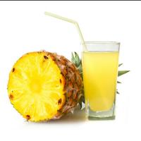 菠萝汁 制造商