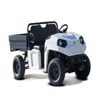 Electric Utility Vehicle Importers