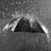 雨伞 制造商