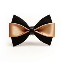 Fashion Bow Importers