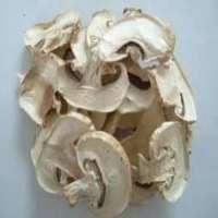 Dehydrated Mushroom Manufacturers