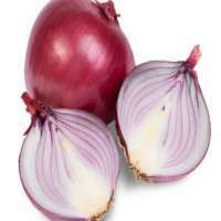 Onion Manufacturers