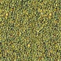 绿小米 制造商
