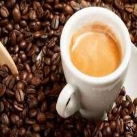 浓咖啡咖啡 制造商