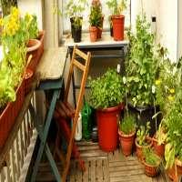 阳台园艺 制造商