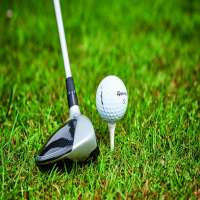 高尔夫球手 制造商