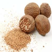 Nutmeg Spice Manufacturers