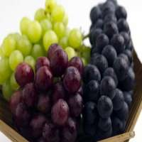 Table Grapes Manufacturers