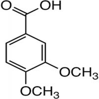 Veratric Acid Manufacturers