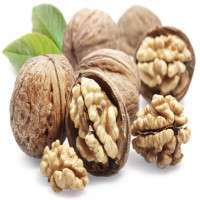Walnut Manufacturers