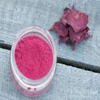 Beet Root Powder Importers