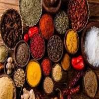 印度香料 制造商