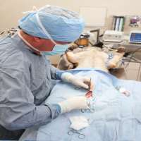Dog Surgery Services Manufacturers