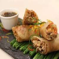 Chicken Spring Roll Importers