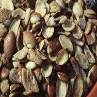 野生芒果种子提取物 制造商