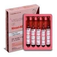 硝酸甘油注射液 制造商