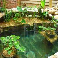 Artificial Water Bodies Manufacturers