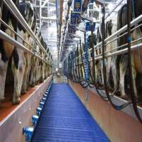 Milking Parlor Manufacturers