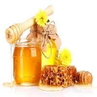 荔枝蜂蜜 制造商