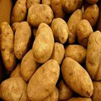 Potatoes Manufacturers