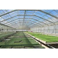 Naturally Ventilated Greenhouse Manufacturers