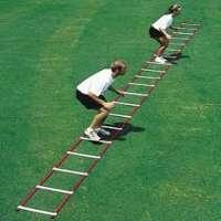 速度梯子 制造商