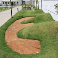 草坪开发服务 制造商