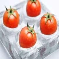 冷冻西红柿 制造商