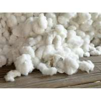 Raw Cotton Importers
