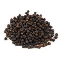 Pepper Seeds Manufacturers