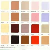 油漆遮阳卡 制造商