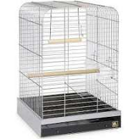 Parrot Cage Manufacturers