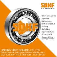 SDKF 6204高速电机轴承深沟球轴承