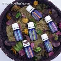 混合扩散器丁香叶精油6包简单而健康的芳香疗法礼品女士男士放松浪漫