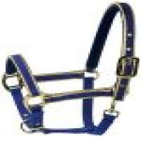 Horse Saddle Accessories