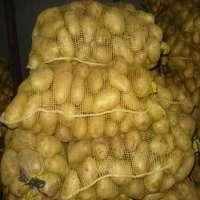 新鲜的土豆