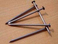 Common Iron Wire Nail