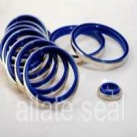 Wiper Seals