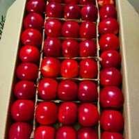红美味的苹果