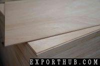 Plywood Door Skin