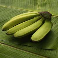 新鲜的香蕉