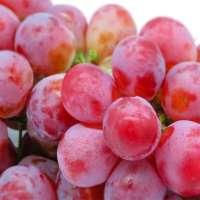 新鲜的葡萄