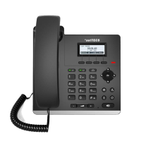 IP Telephone