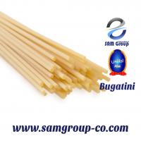 Spaghetti Pasta Noodle